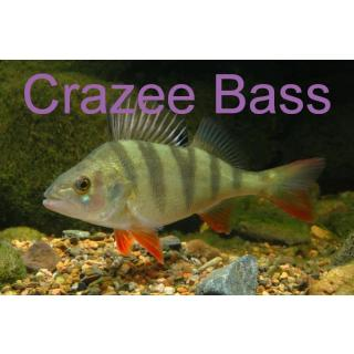 Серия CREZZE BASS (new)