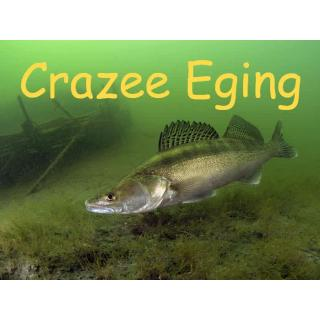 Серия CRAZZE EGING (new)